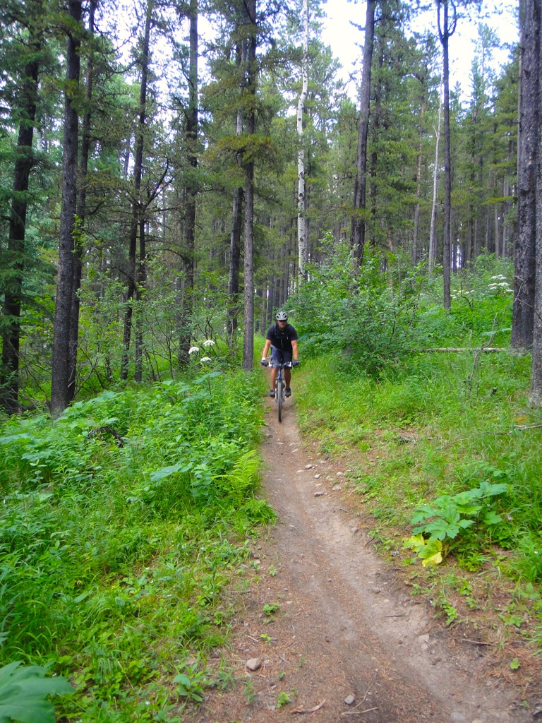 003 - Boundary Ridge Trail (Jeff N.)