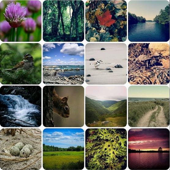 004 - Instagram