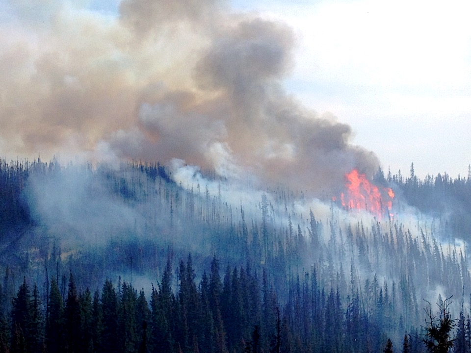 006 - Edson Area Fire