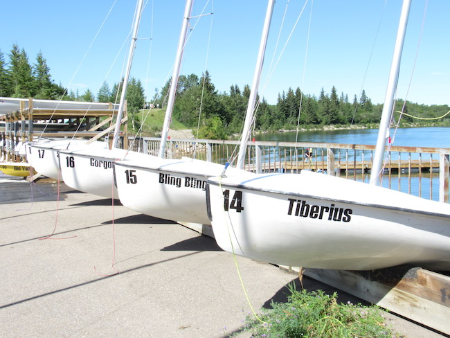 Bookish boats at South Glenmore Park. Photo by Madison Bartlett.