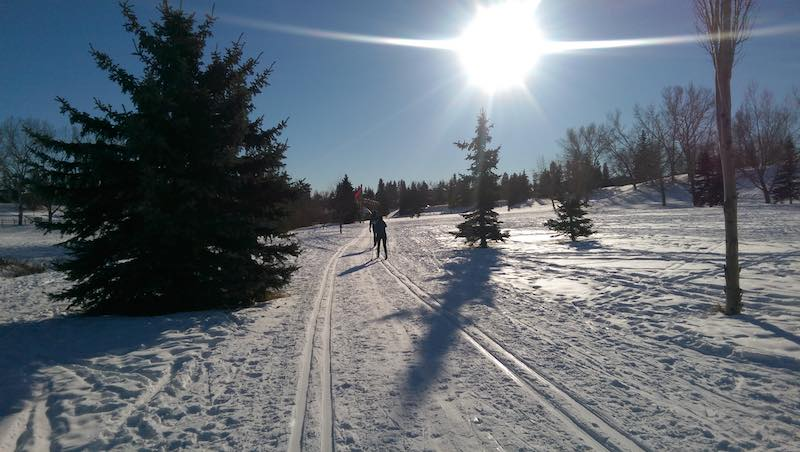 snow alberta