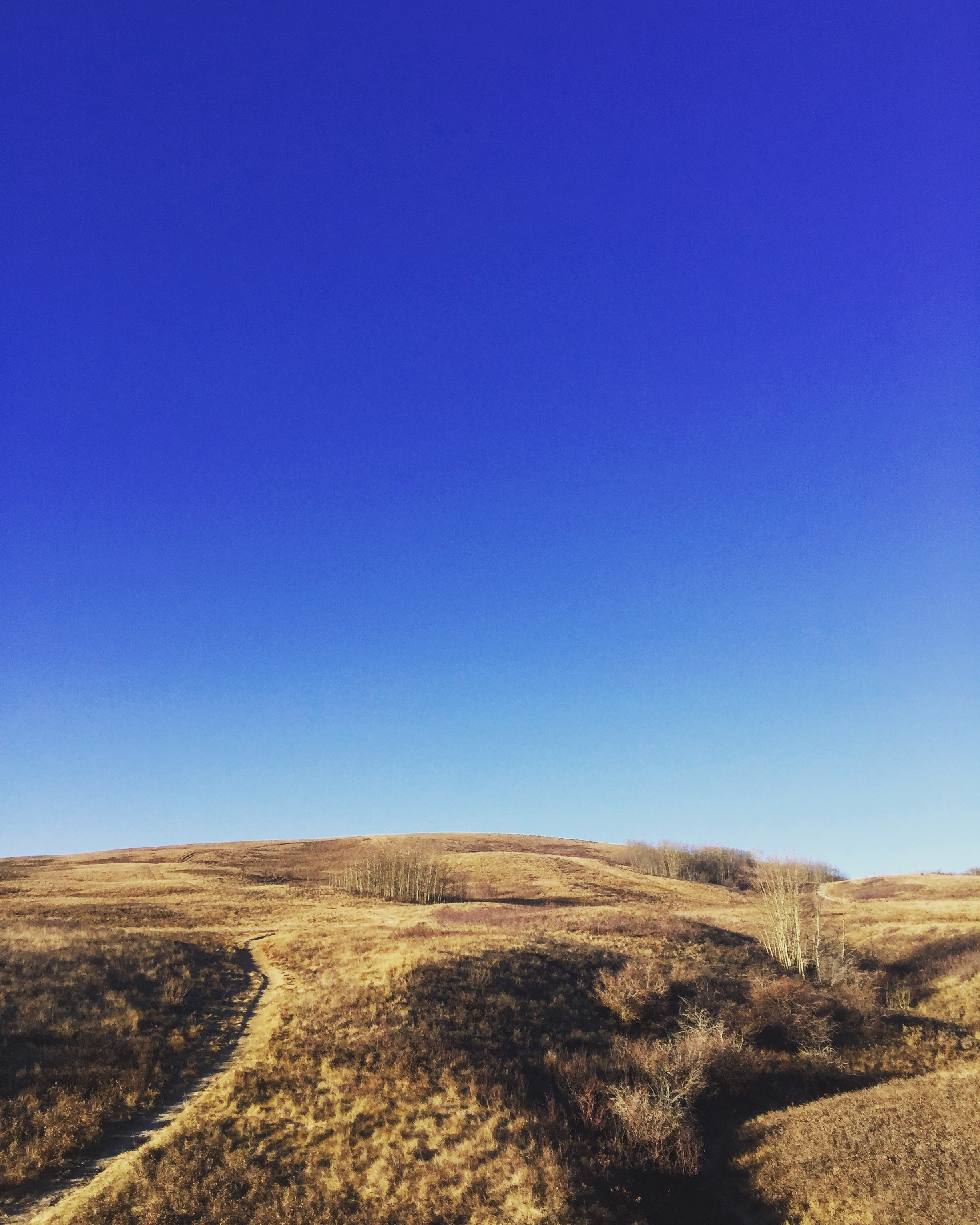 Nose Hill
