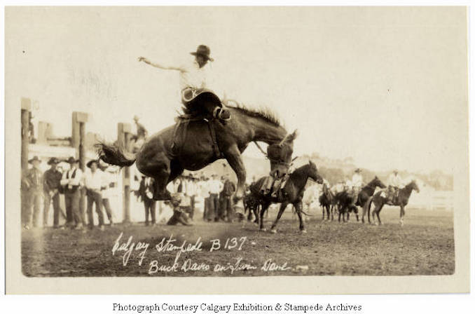 1930 - Buck Davis on Twin Dame, Calgary Stampede