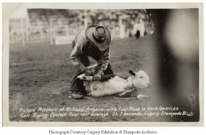 1930 - Richard Merchant of Kirkland, Arizona, wins first place in North American Calf Roping Contest. Four calf average 22.7 seconds