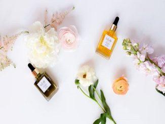Velvette Organics Oils