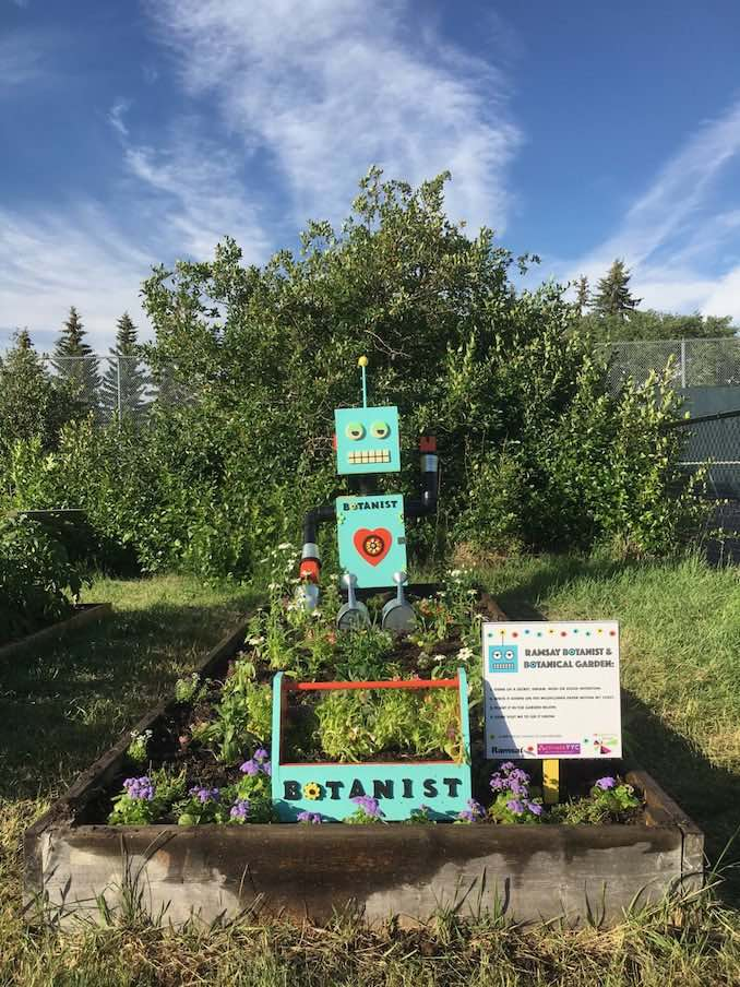 This is a photo of the Botanist that I made with my neighbour, the help of an Activate YYC grant and our sponsors reGenerate Designs. You can visit him any time at the Ramsay Community Garden.