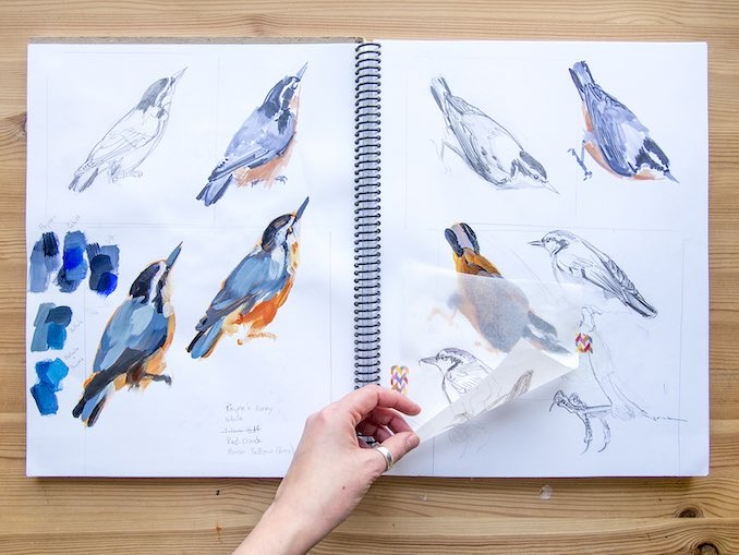 Process - My studio sketchbook is a journal of different ideas and media I've tried out. In this spread, I'm working out the forms for a painting of a nuthatch.