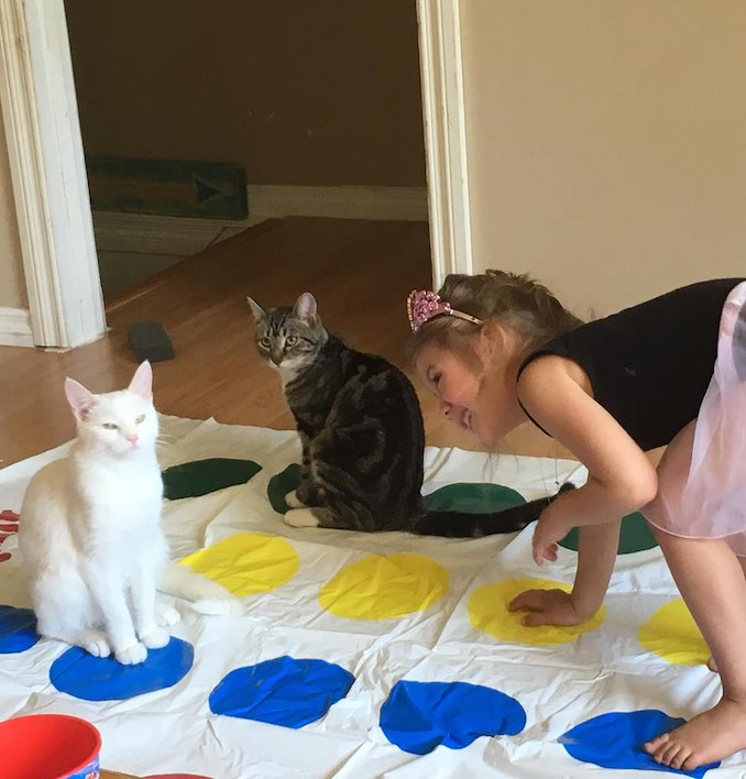 Our cats Popcorn & Babou love to be included in family game night