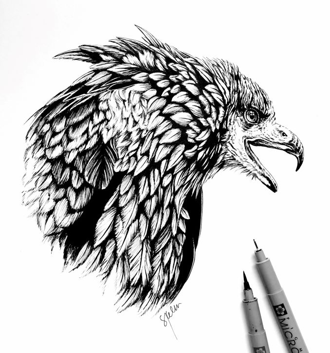 This is a recent detailed blackwork piece I did. I loved drawing all the individual feathers, it's my form of meditation.