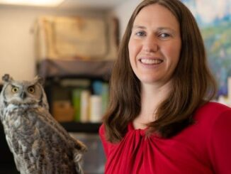 Bree Jones, Executive Director of The Calgary Wildlife Rehabilitation Society, and Ophelia, their resident Great Horned Owl